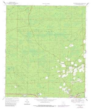 Sanderson North topo map