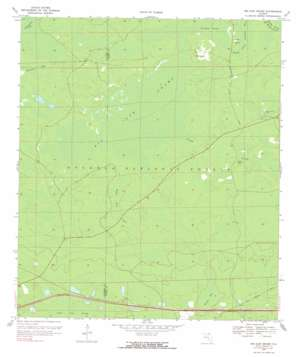 Big Gum Swamp topo map