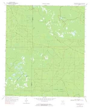 Sanderson Nw topo map