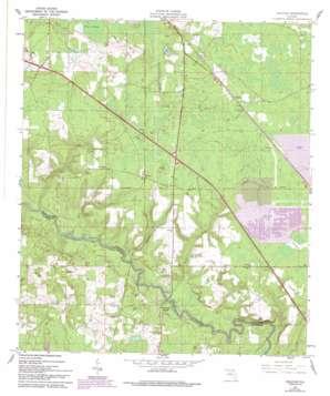 Hillcoat topo map