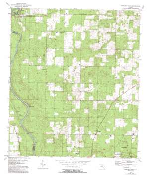 Dowling Park topo map