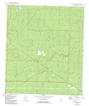 Johnson Hammock topo map