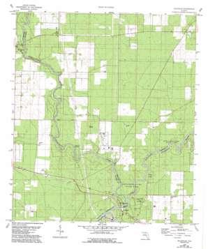 Ellaville topo map