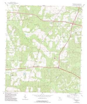 Waukeenah topo map