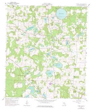 Cherry Lake topo map