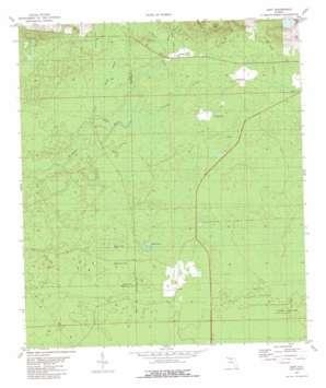 Cody topo map