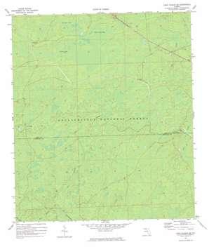 Lake Talquin Se topo map