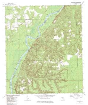 Rock Bluff topo map