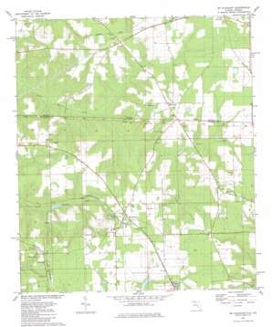 Mount Pleasant topo map