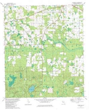 Kynesville topo map