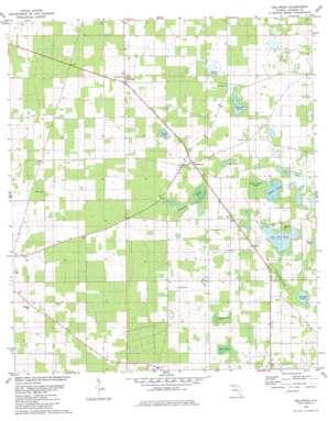 Dellwood topo map