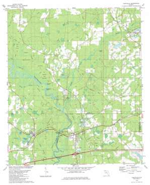 Caryville topo map