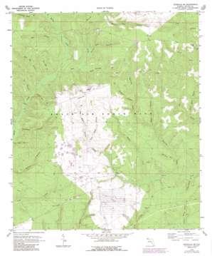 Niceville Se topo map