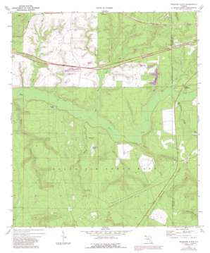 Spencer Flats topo map