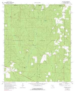 Mclellan topo map