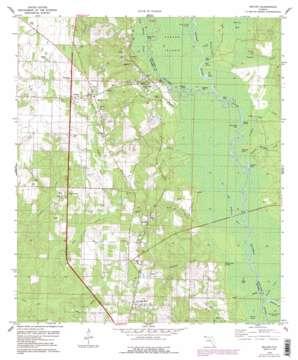 Molino topo map