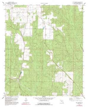 Bay Springs topo map