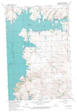 Raub Nw topo map