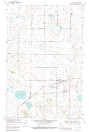 Balta topo map