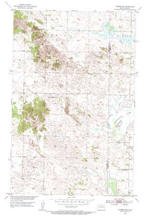 Towner Ne topo map