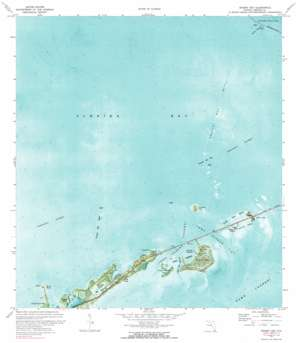 Grassy Key USGS topographic map 24080g8