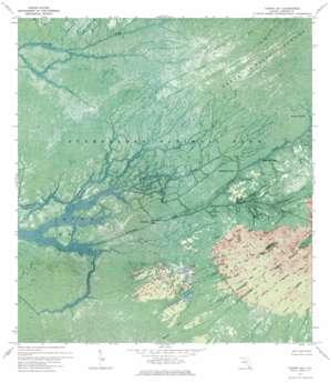 Tarpon Bay USGS topographic map 25080d8