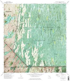 Fortymile Bend USGS topographic map 25080g7