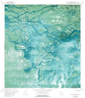 Whitewater Bay West USGS topographic map 25081c1