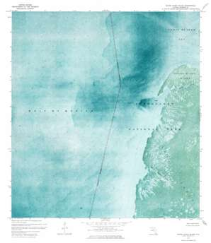 Shark River Island topo map