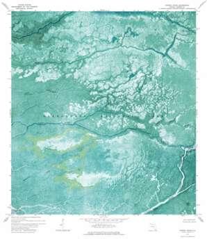 Harney River topo map