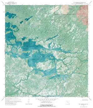 Big Lostmans Bay USGS topographic map 25081e1