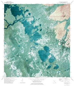 Alligator Bay USGS topographic map 25081f2