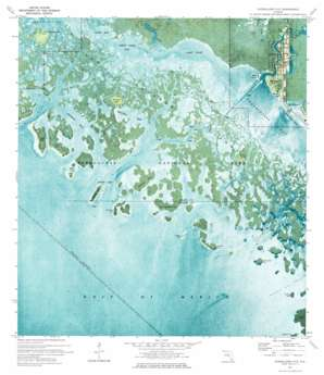 Everglades City USGS topographic map 25081g4
