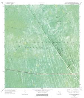 Everglades 4 Nw USGS topographic map 26080b6