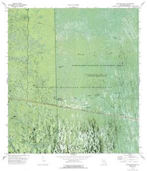 Everglades 3 Ne USGS topographic map 26080b7