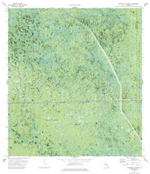 Everglades 3 Nw USGS topographic map 26080b8