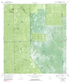 Everglades 2 Nw USGS topographic map 26080d8