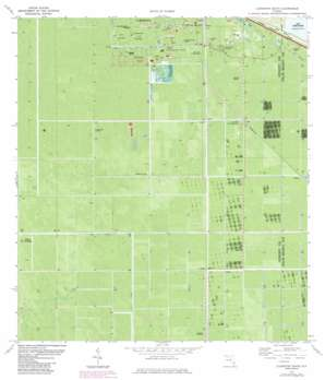 Clewiston South topo map
