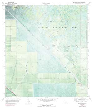 Big Mound South USGS topographic map 26080g4