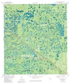 West Palm Beach 2 Ne USGS topographic map 26080h3
