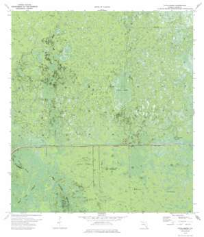Immokalee 4 Nw USGS topographic map 26081b2
