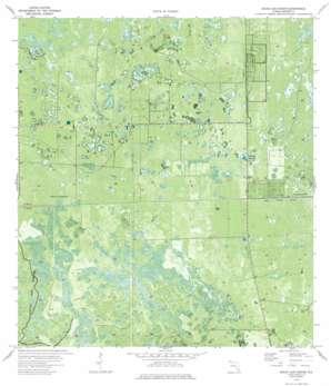 Immokalee 1 Ne USGS topographic map 26081d1