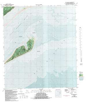 Dog Island USGS topographic map 29084g5