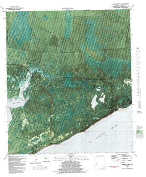 Green Point topo map