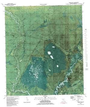 Pickett Bay USGS topographic map 29084h6