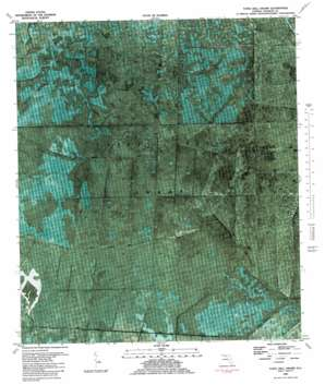 Tates Hell Swamp USGS topographic map 29084h7