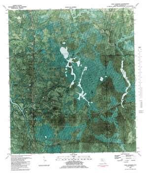 Fort Gadsden topo map