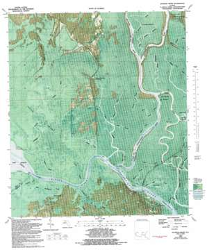 Jackson River USGS topographic map 29085g1