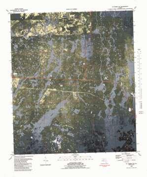 Saint Marks Ne topo map