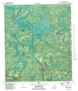 Tenmile Swamp topo map